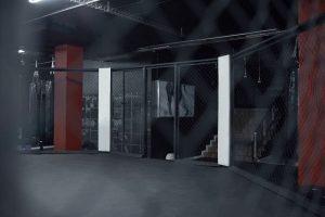 Mixed Martial Arts London