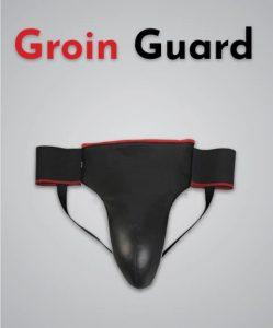 groin guard MMA